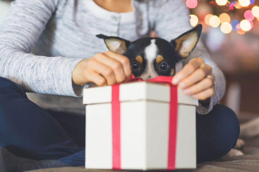 Safe Online Shopping for the Holidays and Beyond article image.