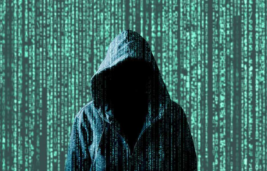 Identity Theft Statistics article image.