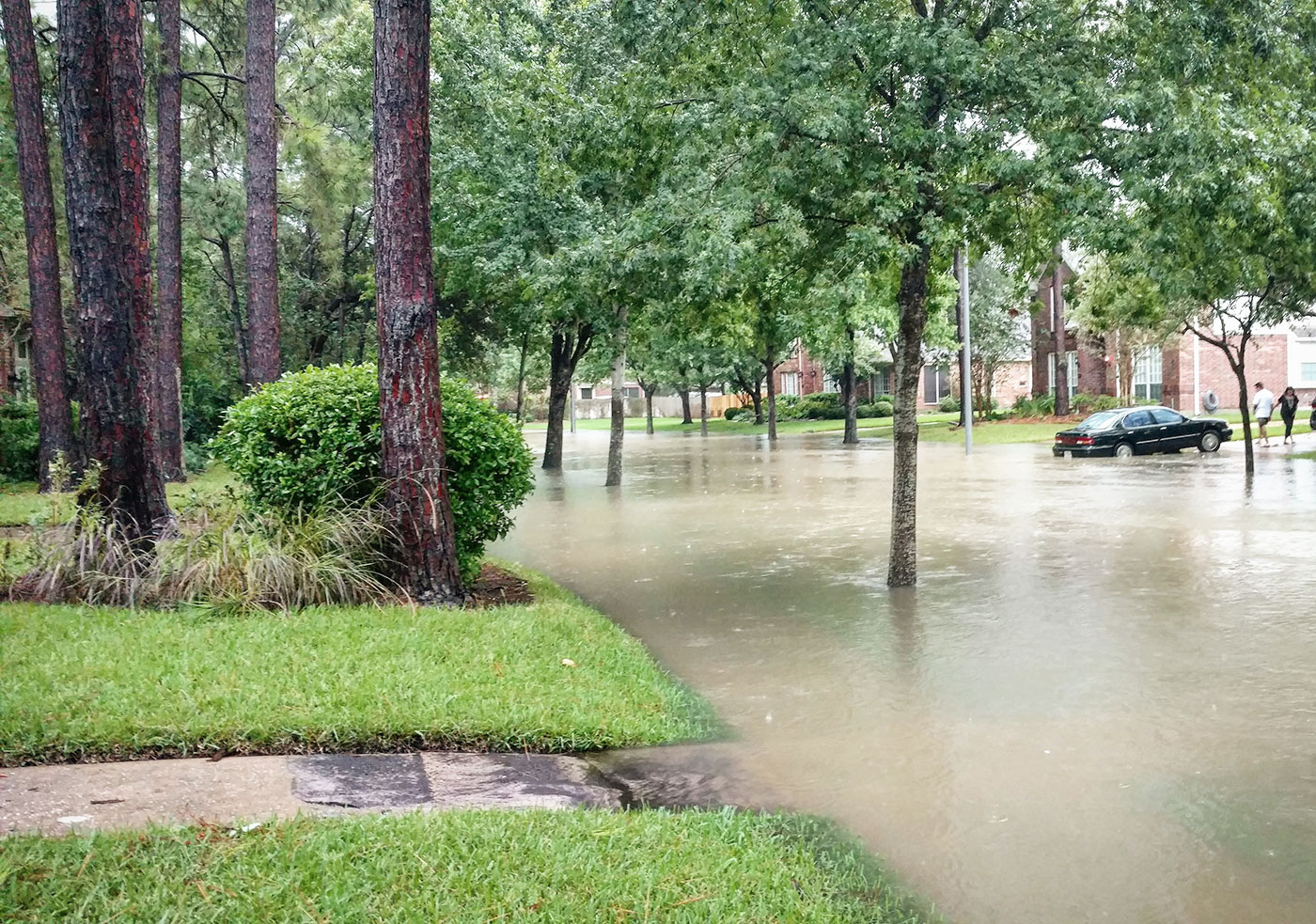 How Does a Natural or Declared Disaster Impact My Credit? article image.